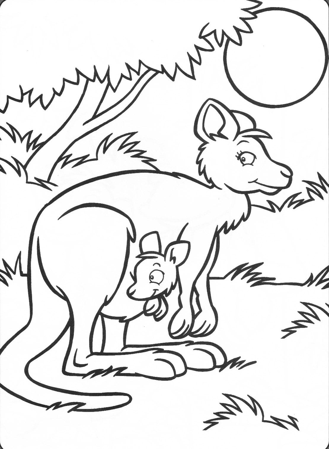 Kangaroo - Animal Coloring pages for kids to print & color