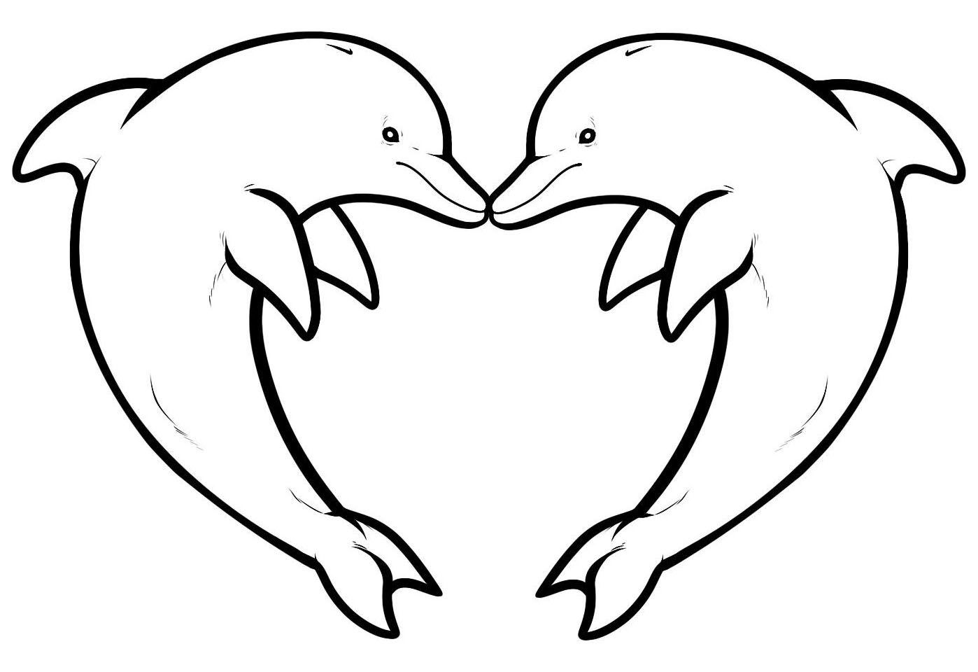 two dolphins forming a heart image with dolphin love heart from