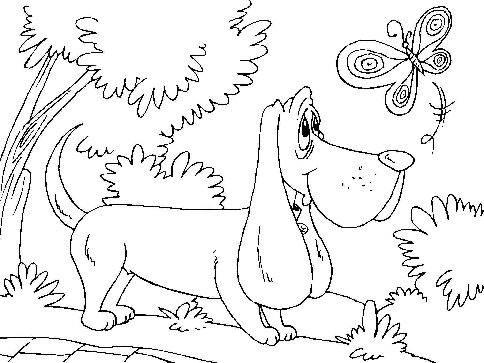Dog And Butterfly Animals Adult Coloring Pages