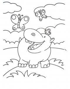 Coloring hippopotamus and butterflies