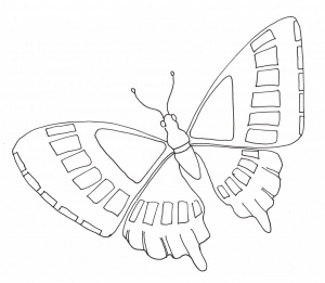 coloring simple butterfly flying