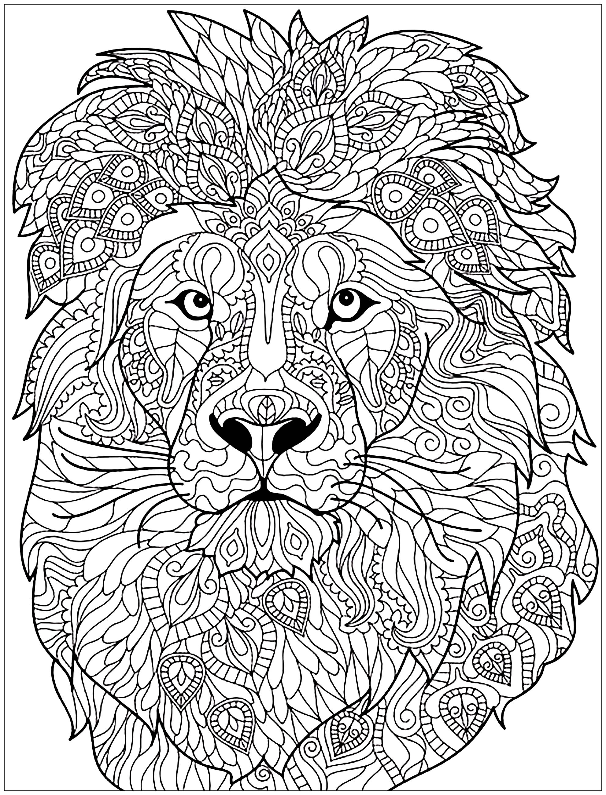 Coloring Page Lion Complex Patterns Head With Very