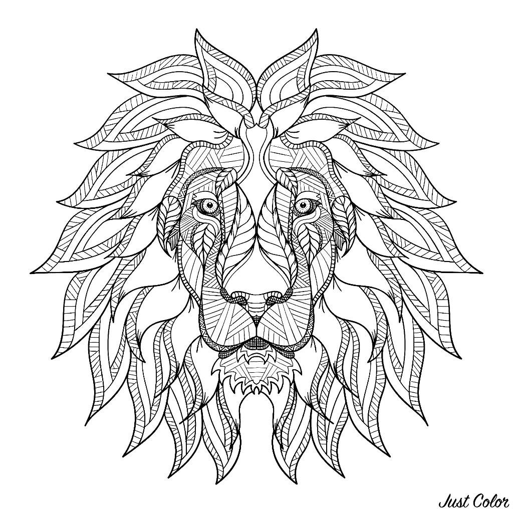 Lion head with big mane - Lions Adult Coloring PagesLion Head Coloring Pages For Adults