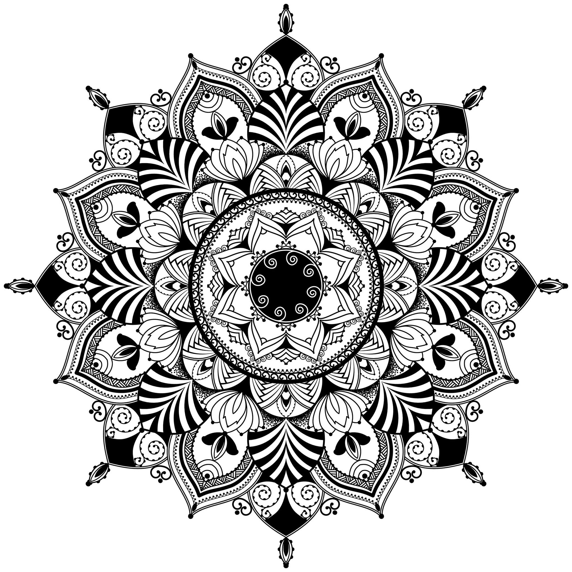 Mandala Zentagle Inspired Illustration Black And White