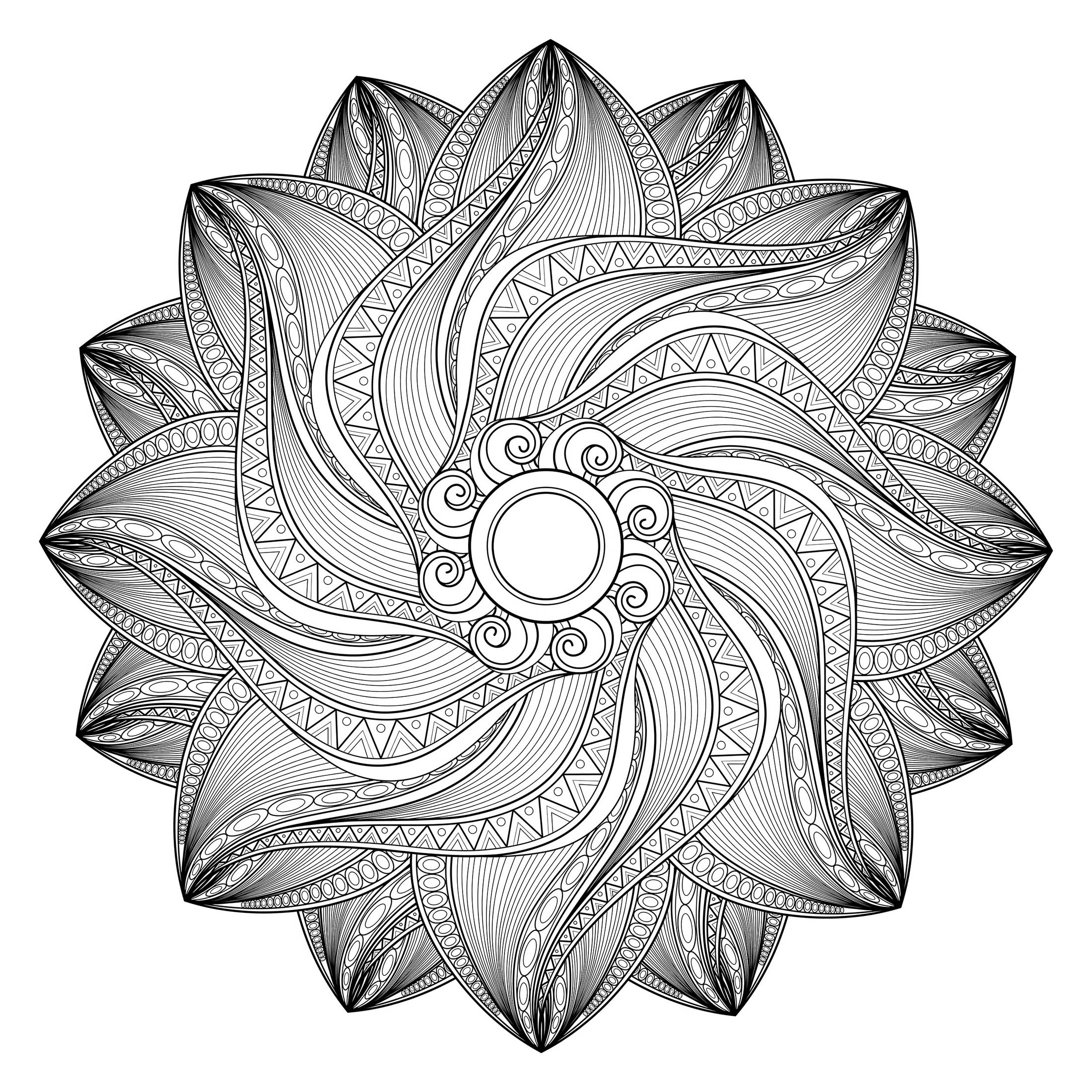 Vector Beautiful Deco Monochrome Contour Mandala M alas