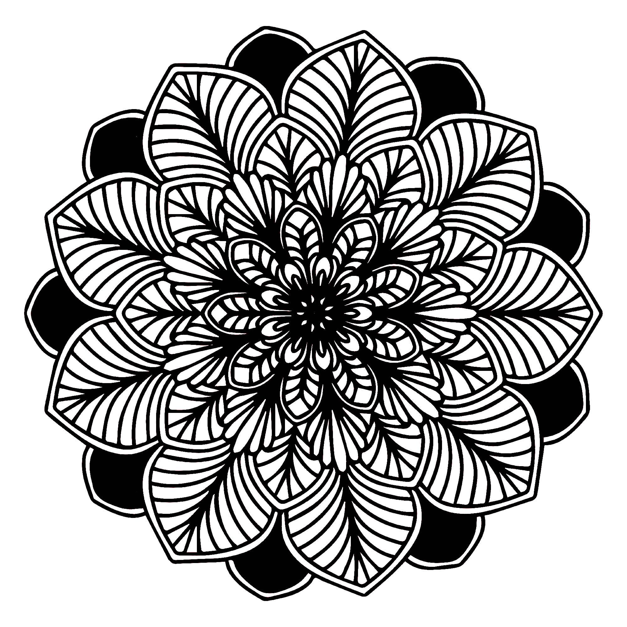 Black Amp White Mandala M Amp Alas Adult Coloring Pages