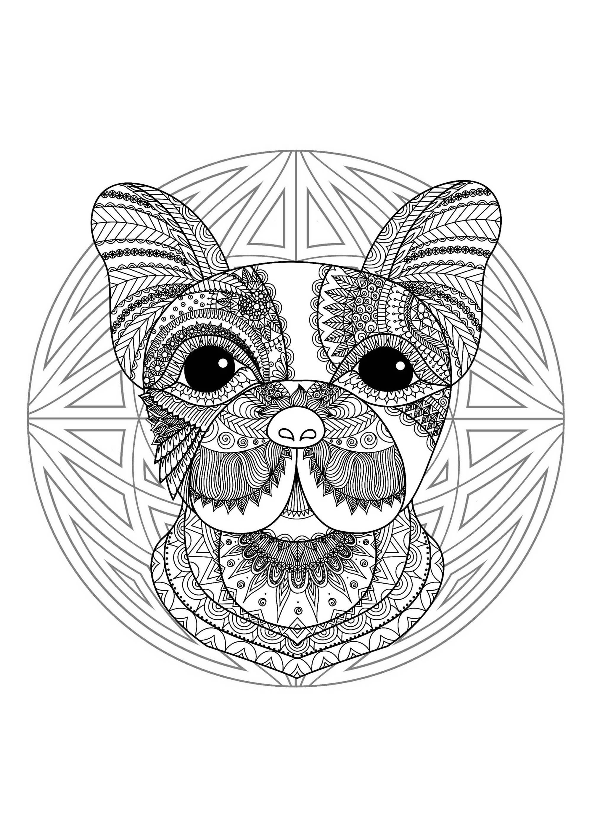 Coloring page with funny Dog head and beautiful Mandala in background