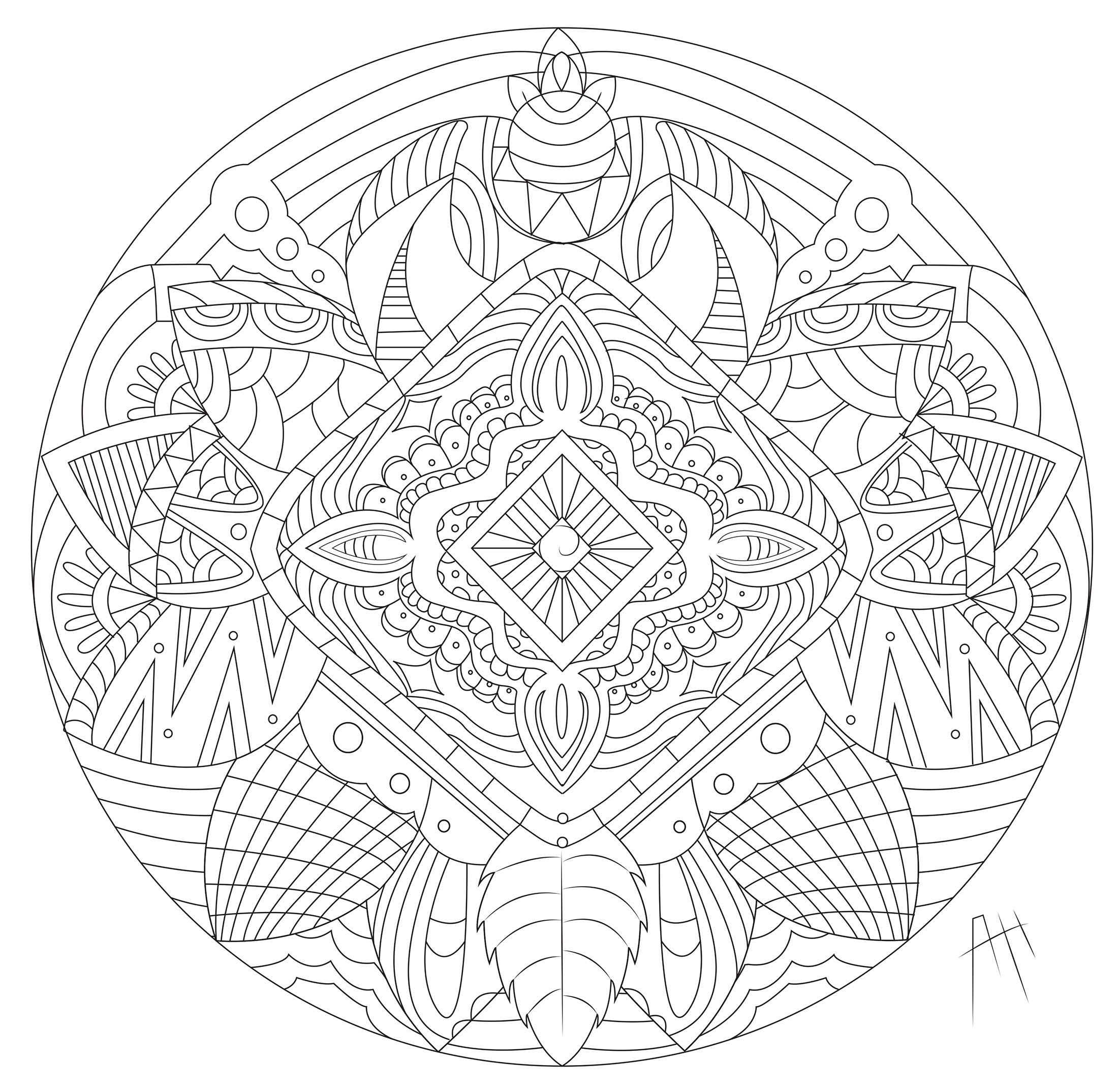 Leaves, Flowers and feathers in a beautiful Mandala