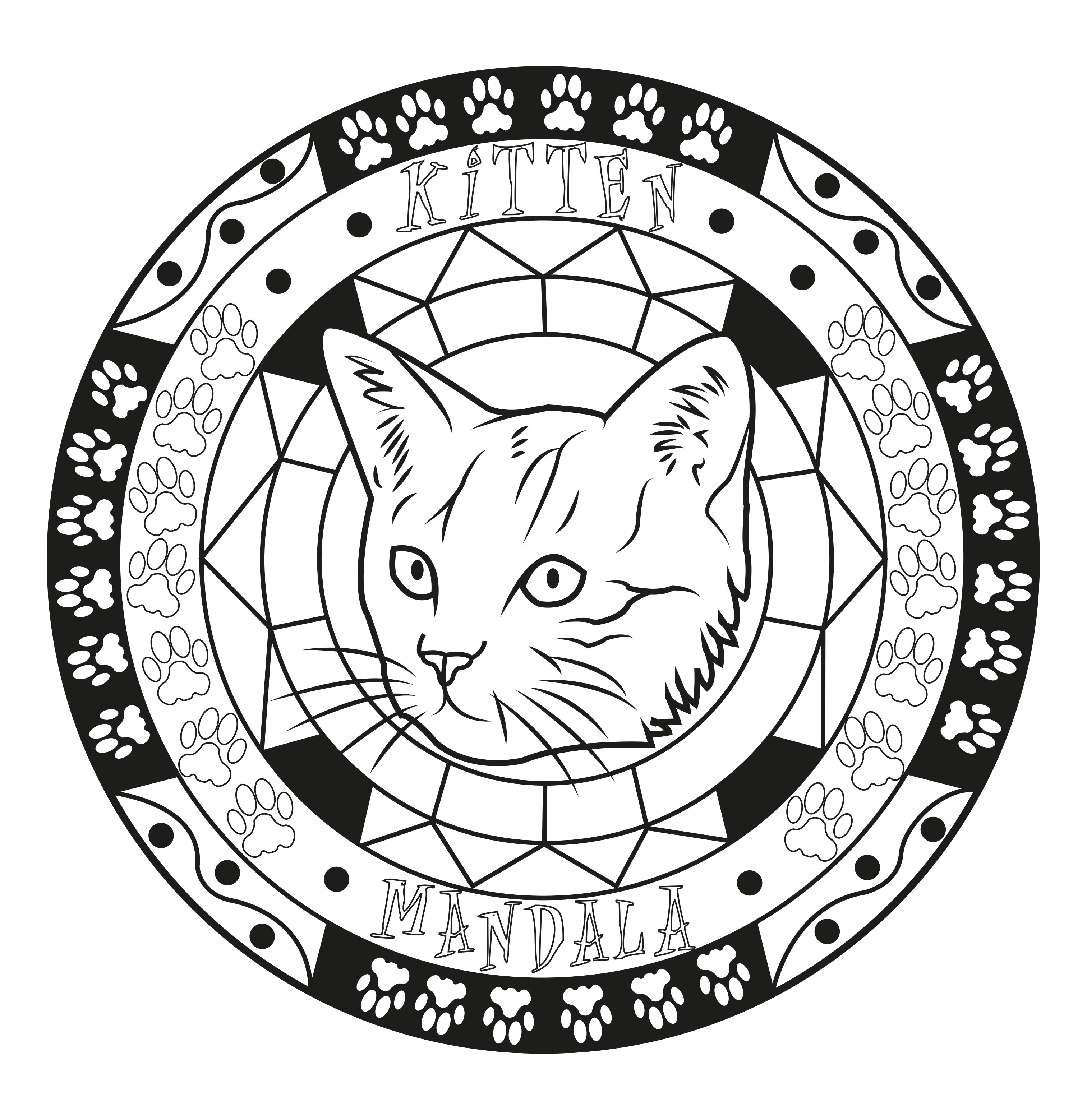 Mandala coloring page on the cat's theme