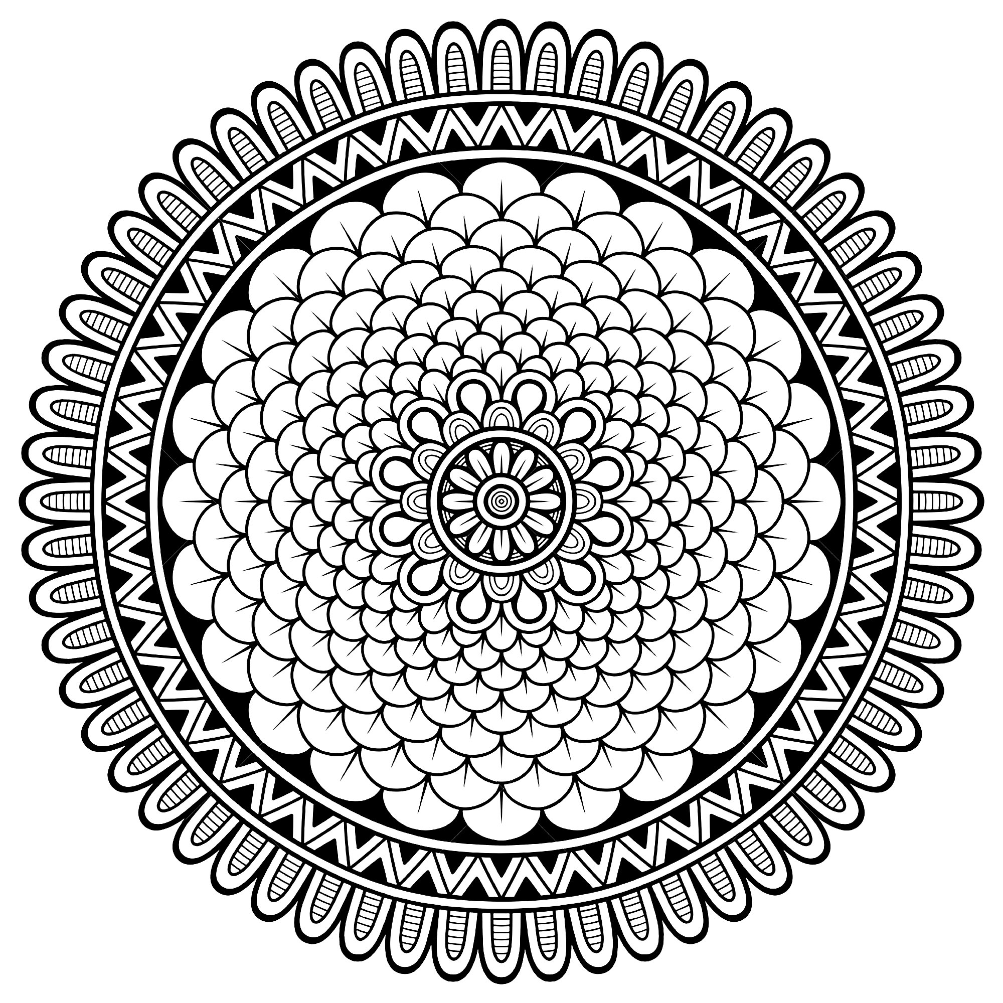 Little petals in beautiful Mandala