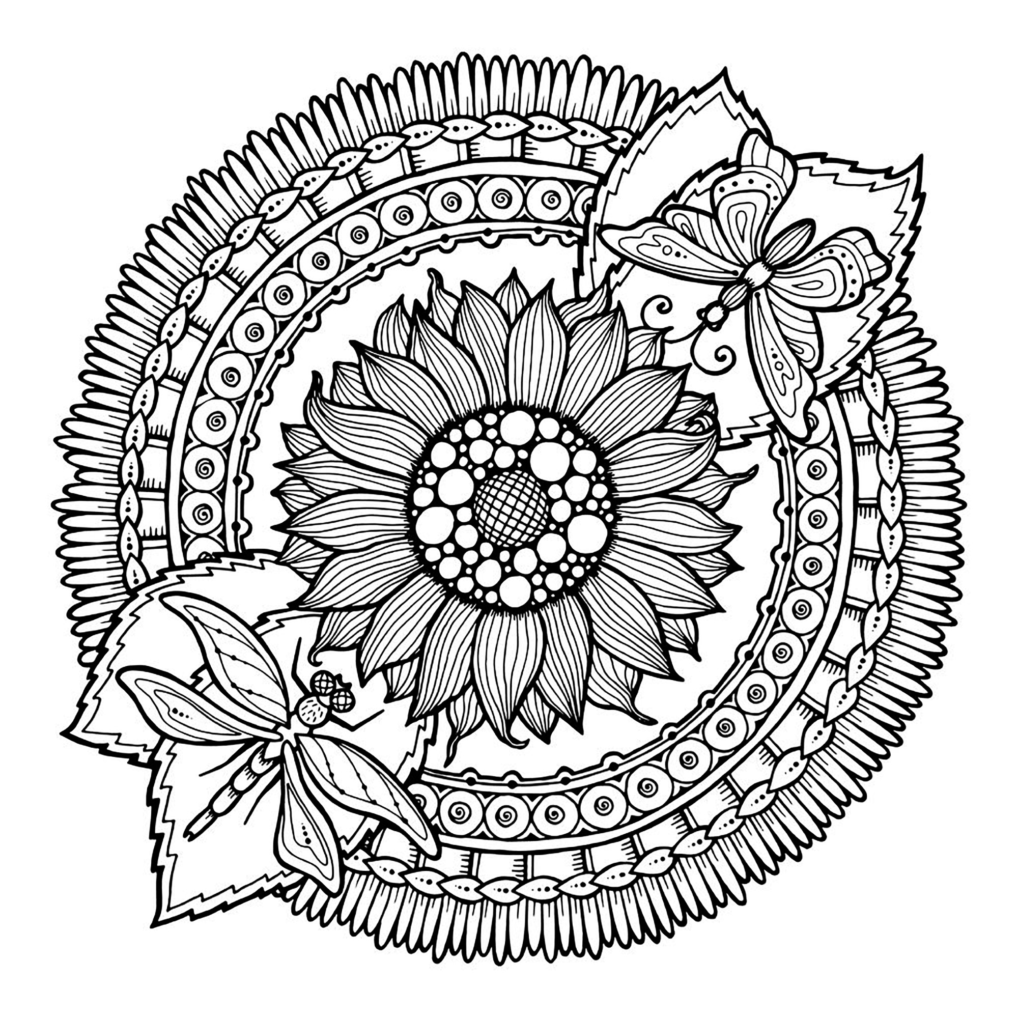 Coloring pages adults mandala dragonfly and flowers by juliasnegireva