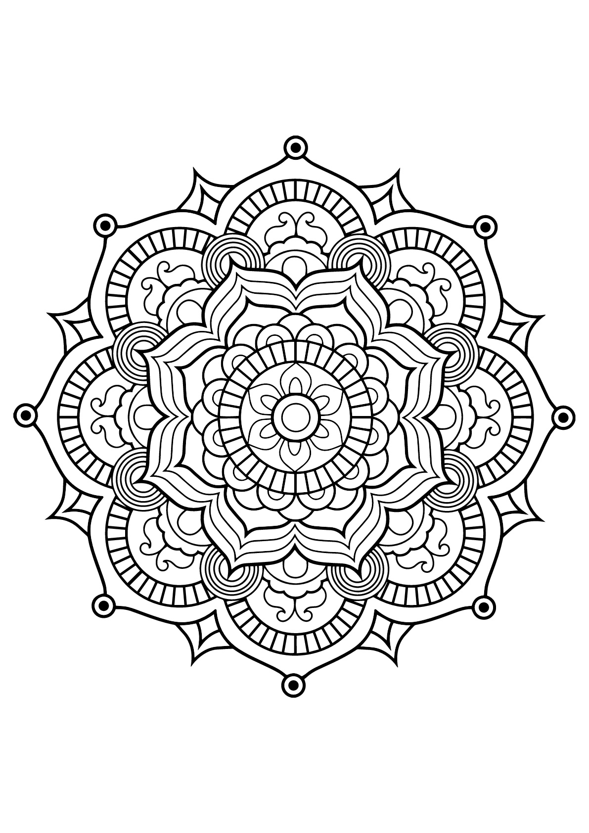 Mandala with vegetal patterns from Free Coloring book for adults