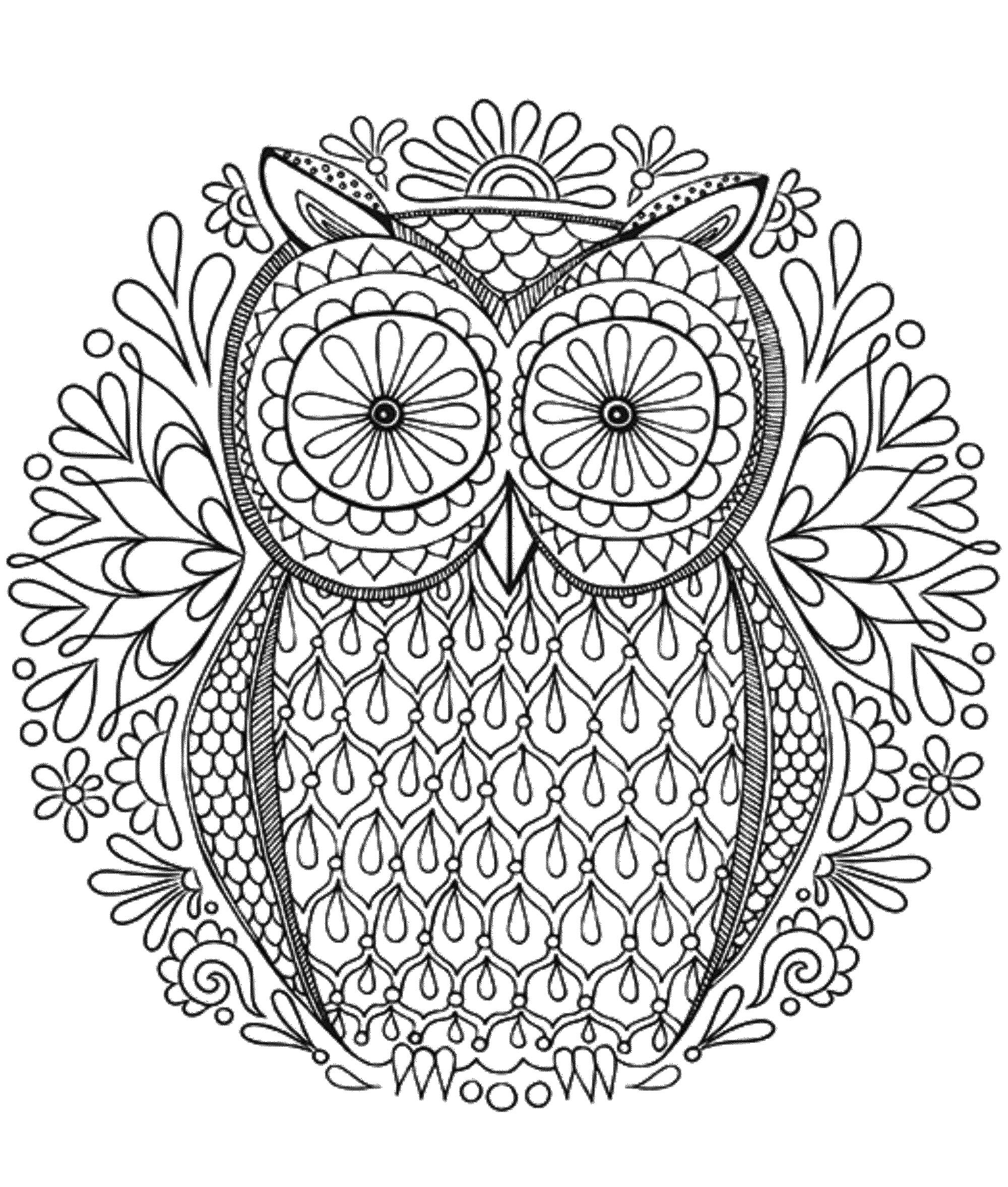 Mandala to download in pdf 6 - Image with : Owl | From the gallery : Mandalas