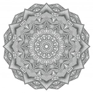 Outline Mandala Flower