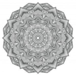 Outline Mandala Flower