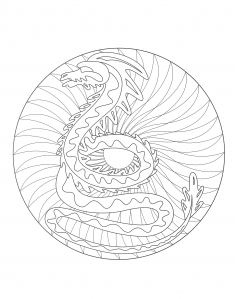 Coloring mandala dragon 2
