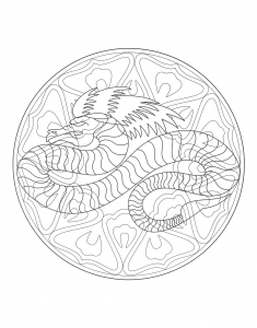 Coloring mandala dragon 4