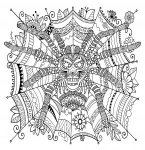 Beautifully Decorated Spider On A Zentangle Patterned Web