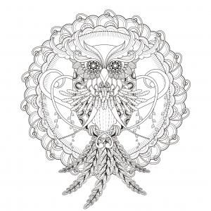 Coloring page mandala Owl by Kchung