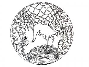 coloring page mandala heron