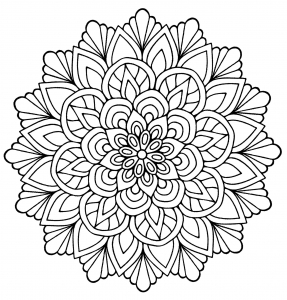 Cute Mandala Flowers Leaves