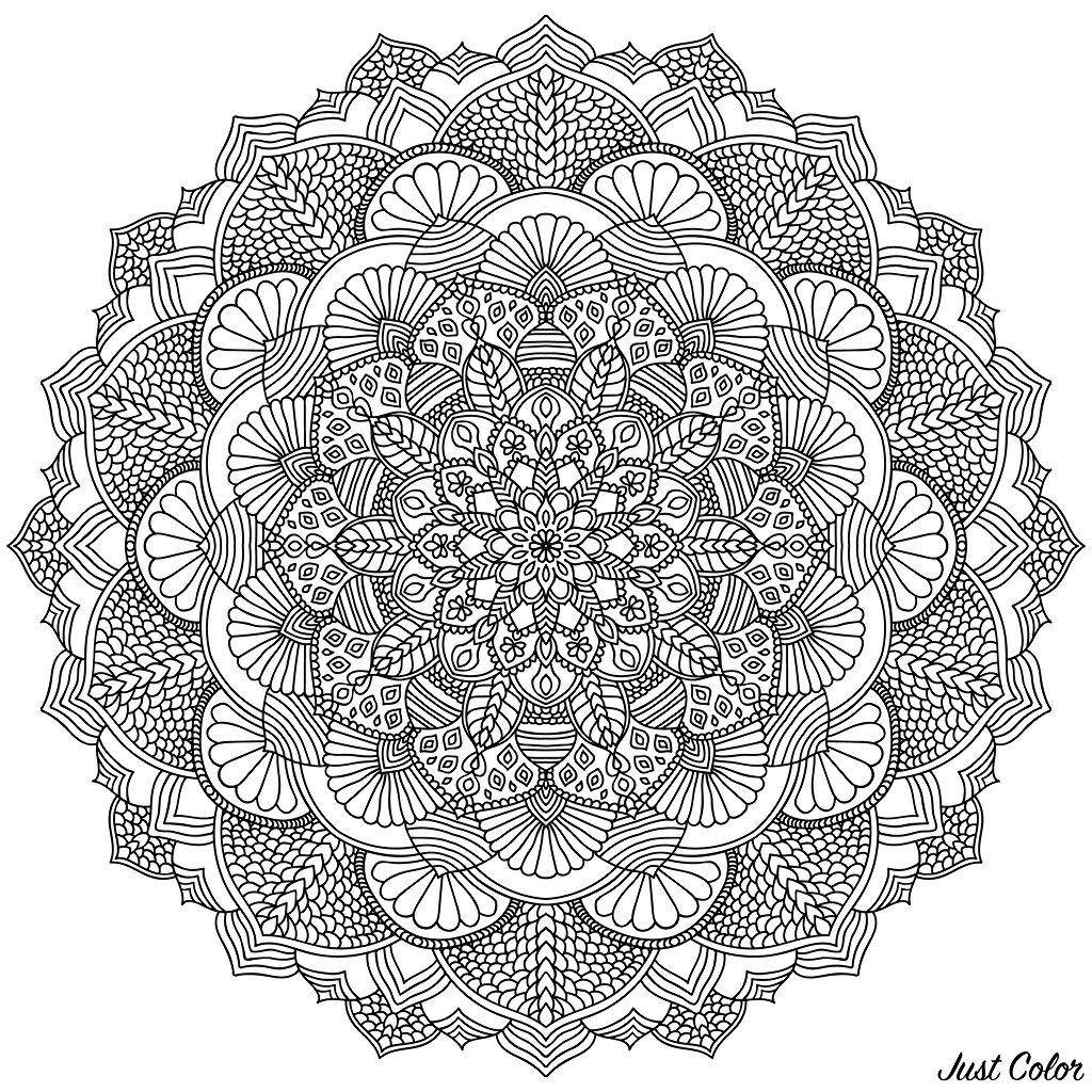 Intricate Black Mandala for Coloring. Line mandala isolated on white background.