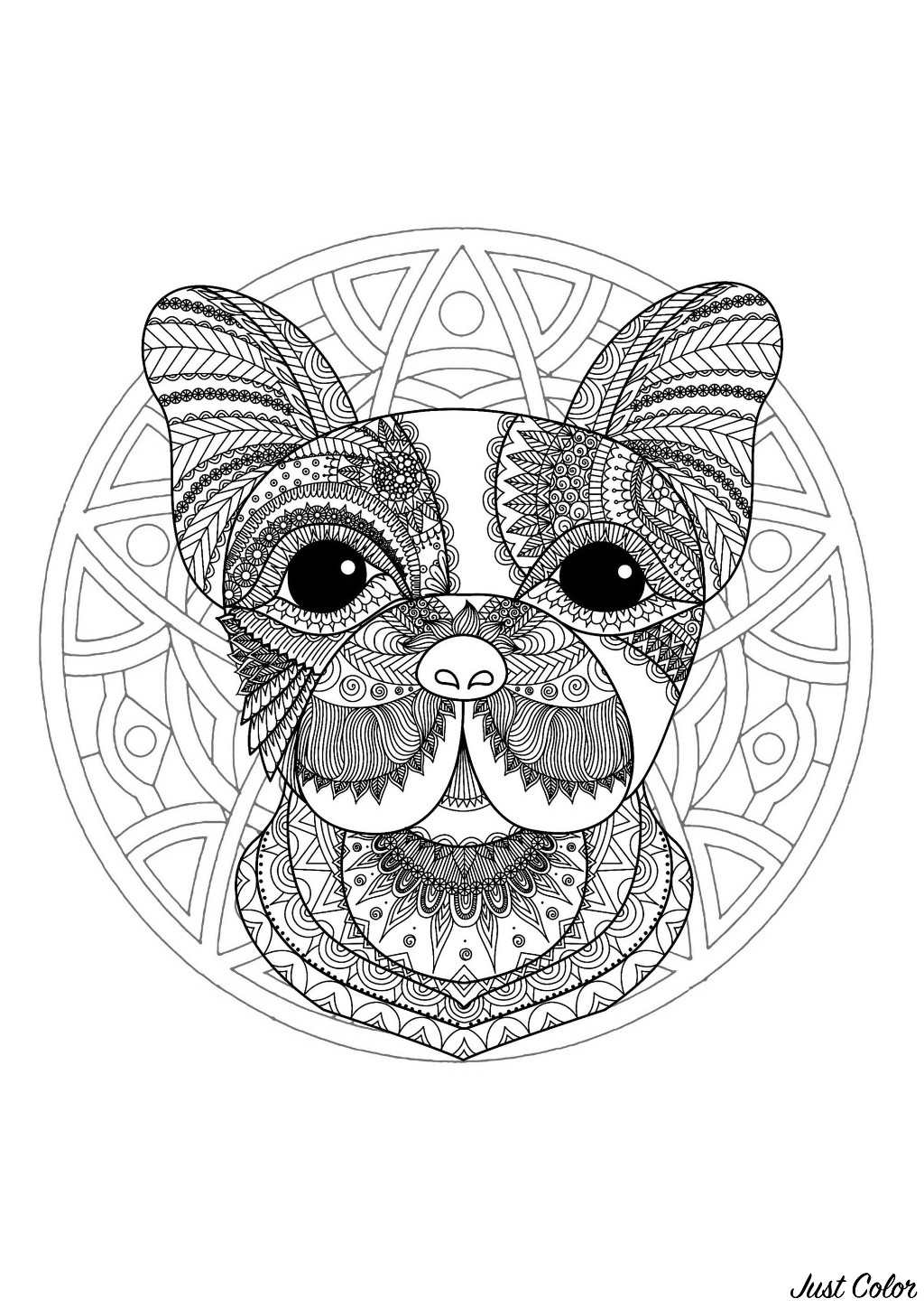 Mandala With Funny Dog Head And Elegant Patterns M Alas Adult