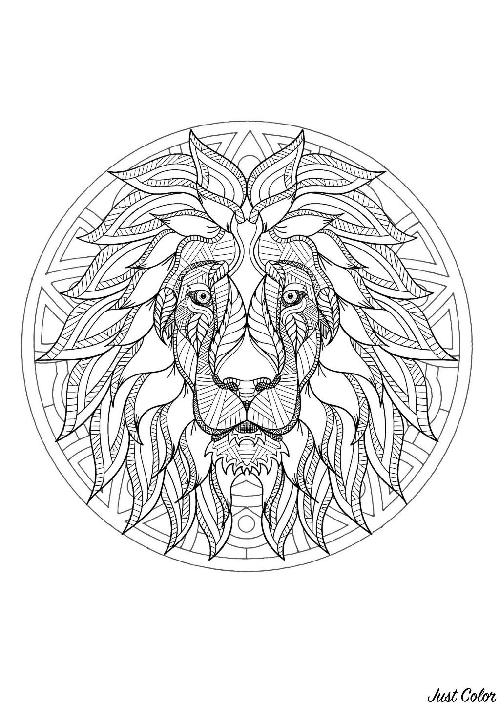 Mandala to color with beautiful Lion head and simple patterns in background
