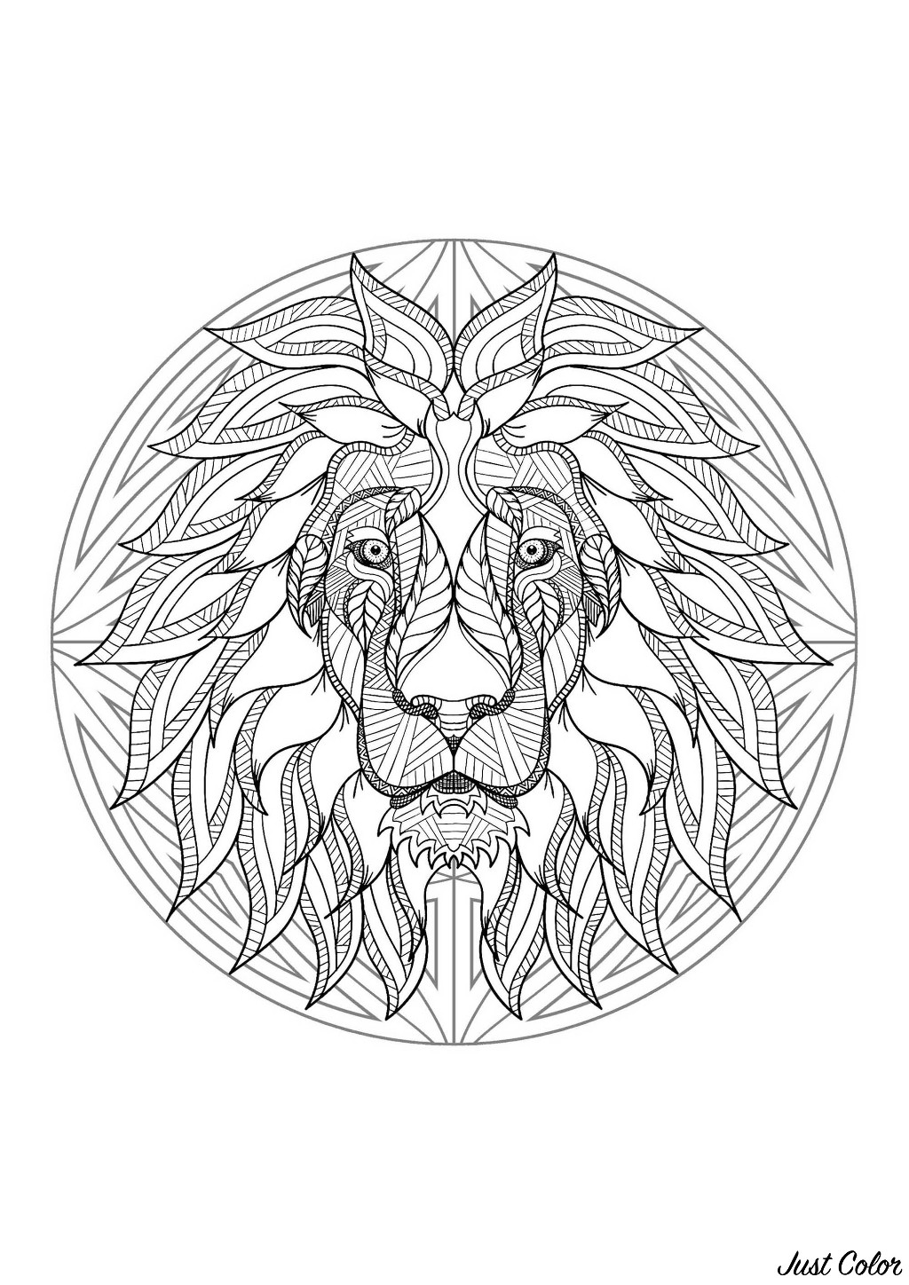 Mandala to color with very special Lion head and simple patterns in background