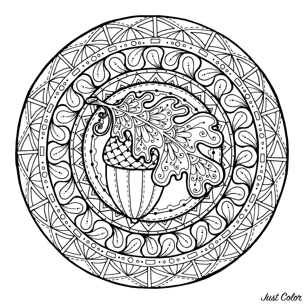 Acorn and Oak Leaves in an harmonious Mandala