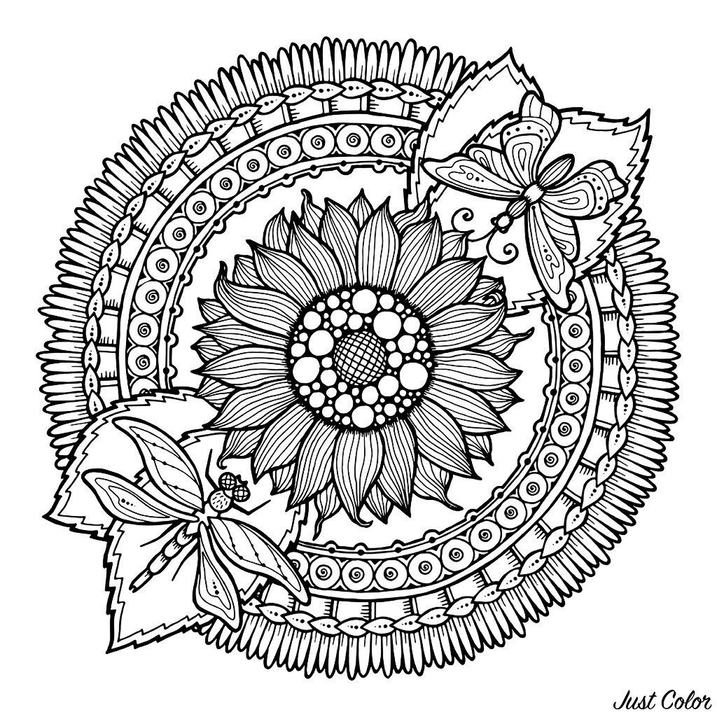 Mandala Dragonfly And Flowers M Alas Adult Coloring Pages