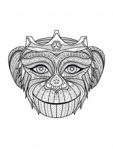 Coloring adult monkey head
