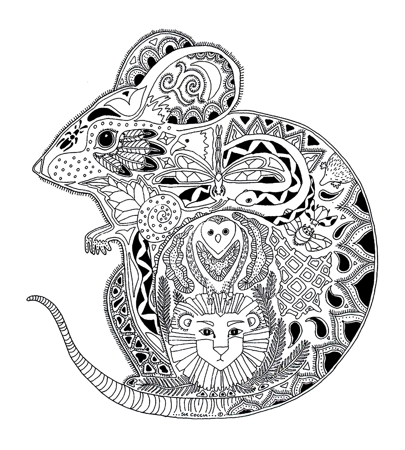 Drawing of a mouse, with interesting details