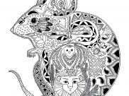 Mouses Coloring Pages for Adults
