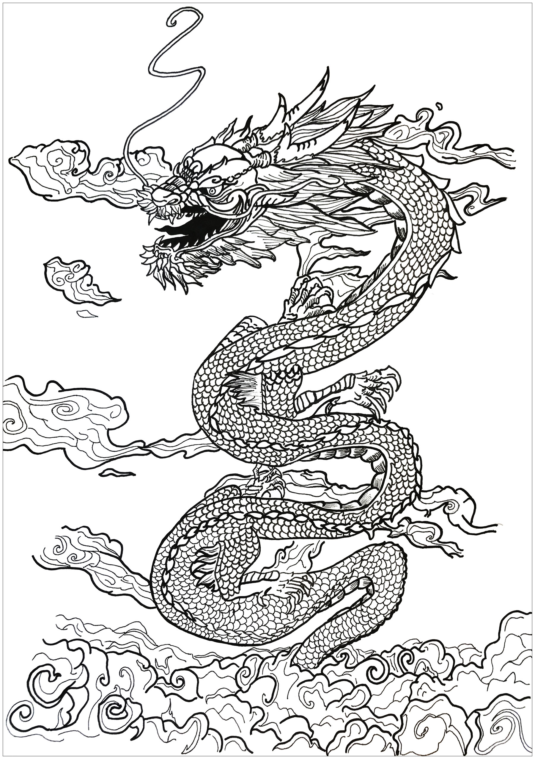 an incredible dragon slipping through the clouds by alexis from the gallery myths - Dragon Coloring Pages For Adults