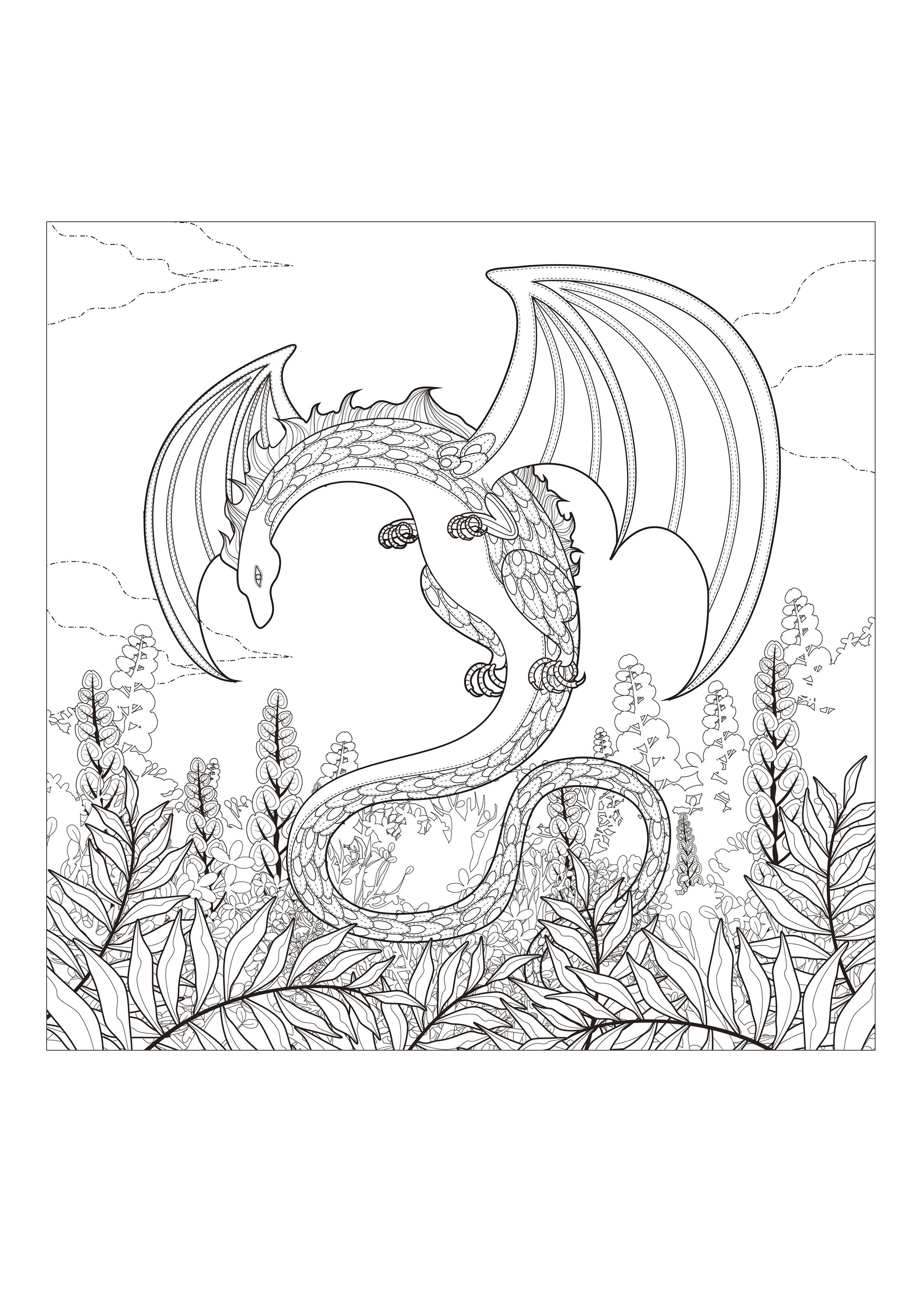 print - Free Coloring Pages Of Dragons To Print
