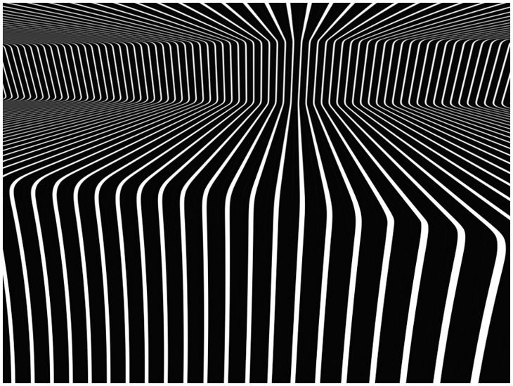 Op Art is the art of optical illusions ... her is the proof !
