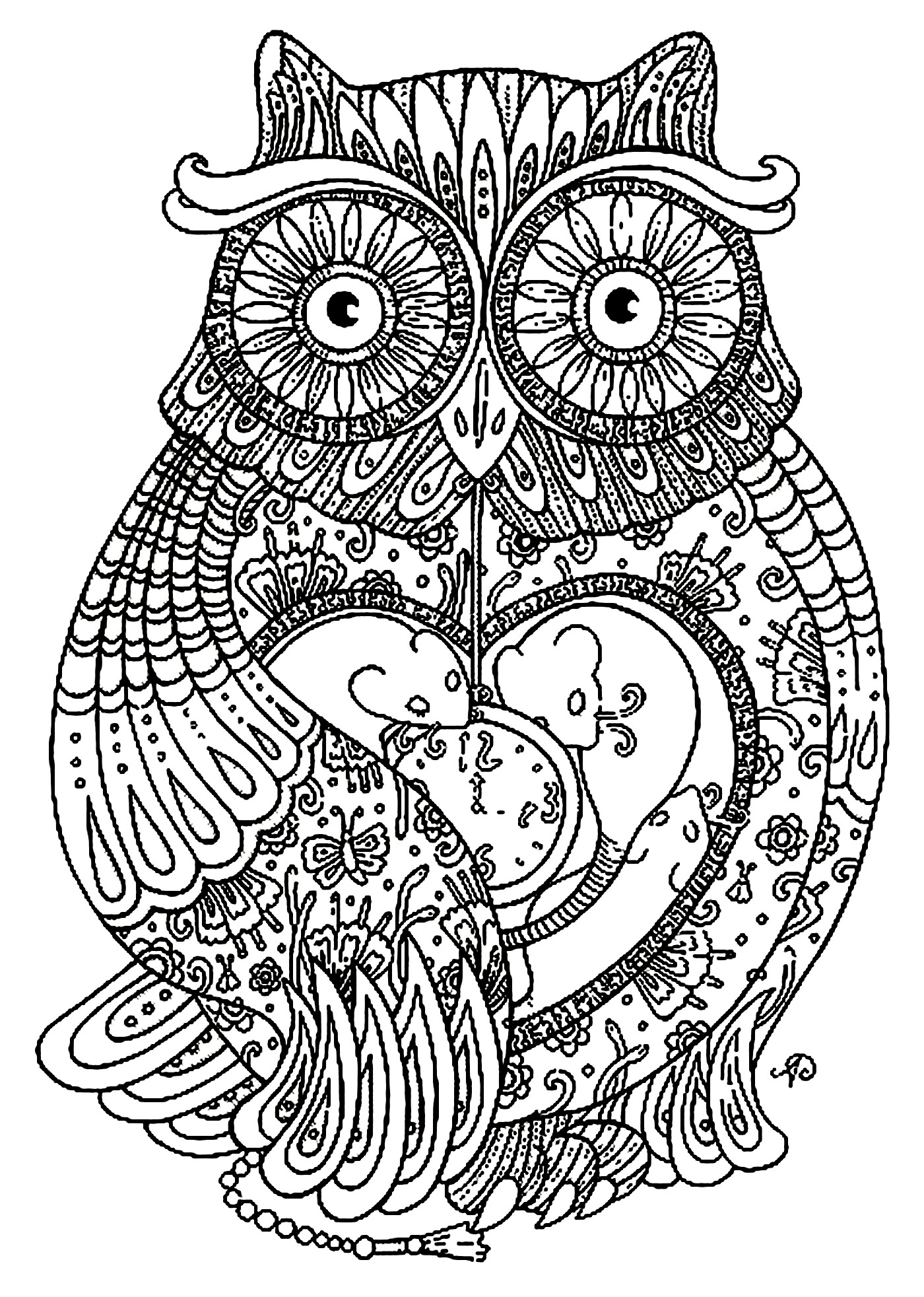 Pretty Owl full of details