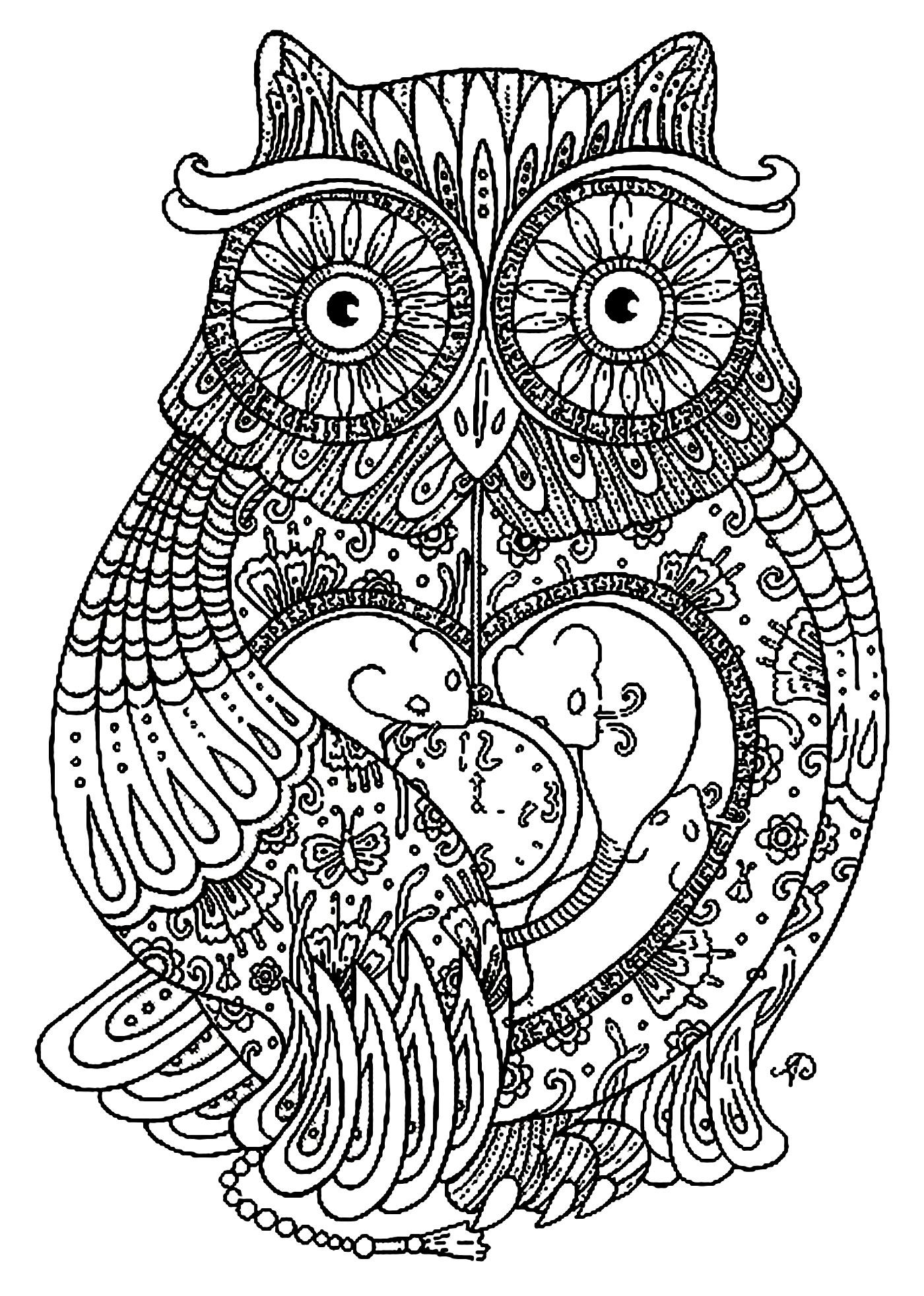Pretty Owl full of details