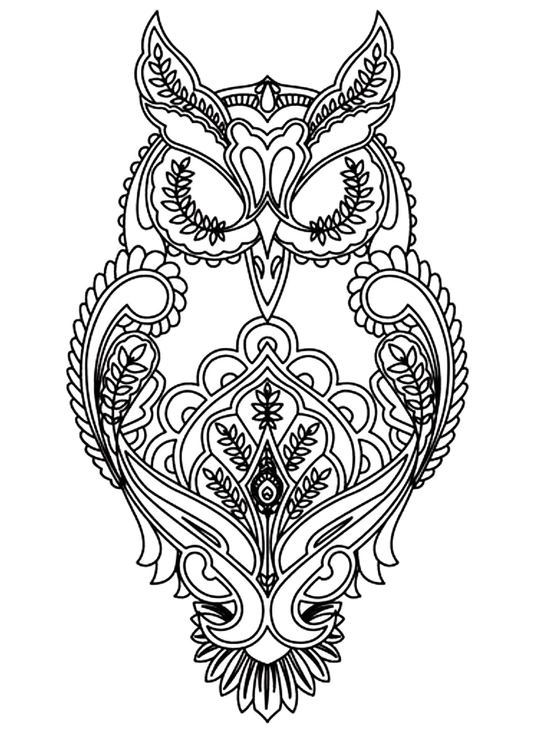 Owl - Owls Adult Coloring Pages