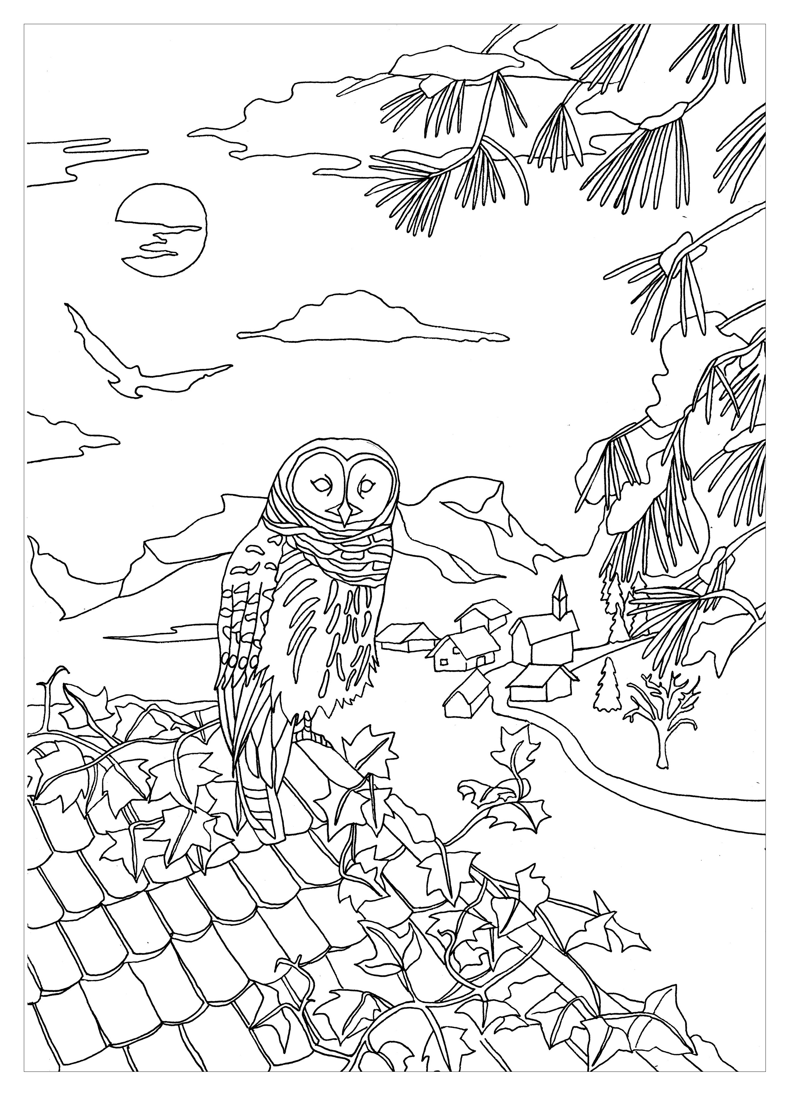 A beautiful Own on a roof, to print & color, an original coloring page .