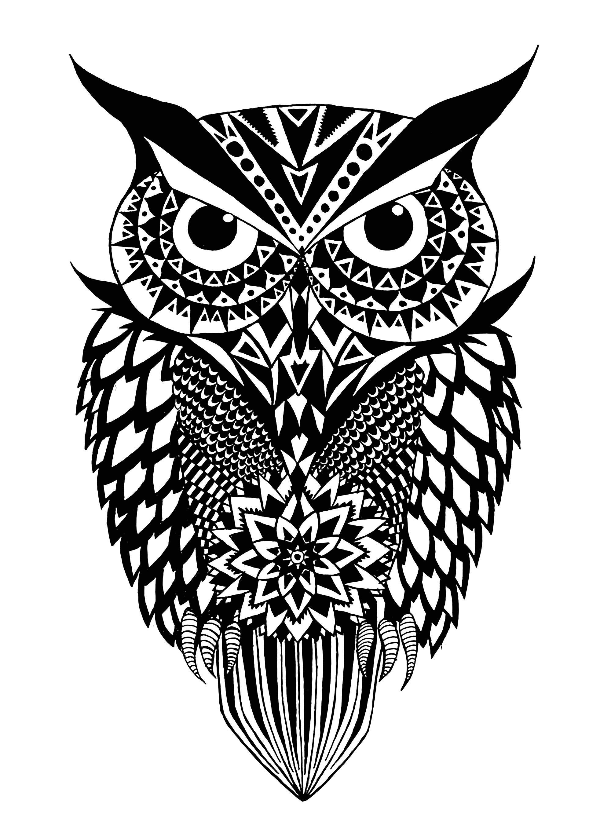 Black And White Owl Owls Adult Coloring Pages