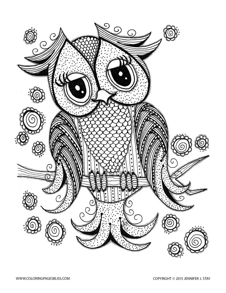 Cute Owl - Owls Adult Coloring Pages