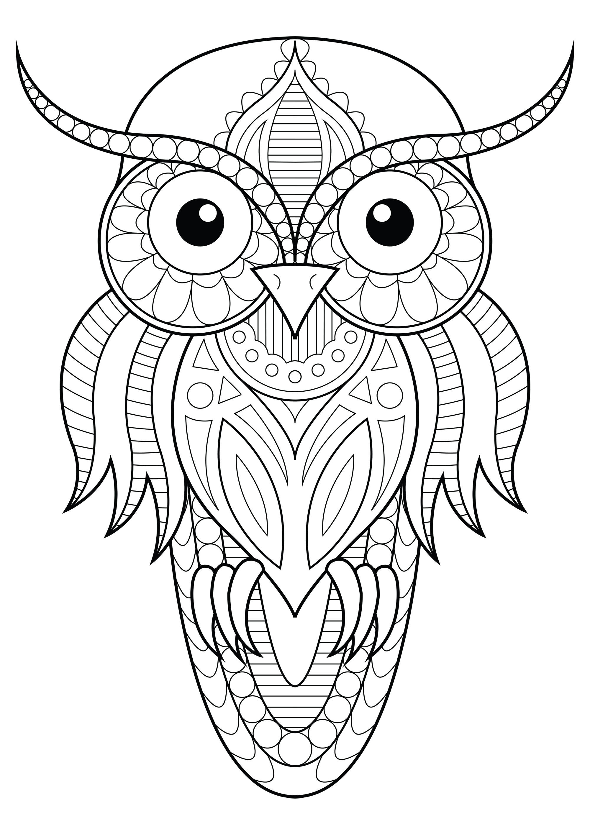 Color this simple Owl with beautiful patterns