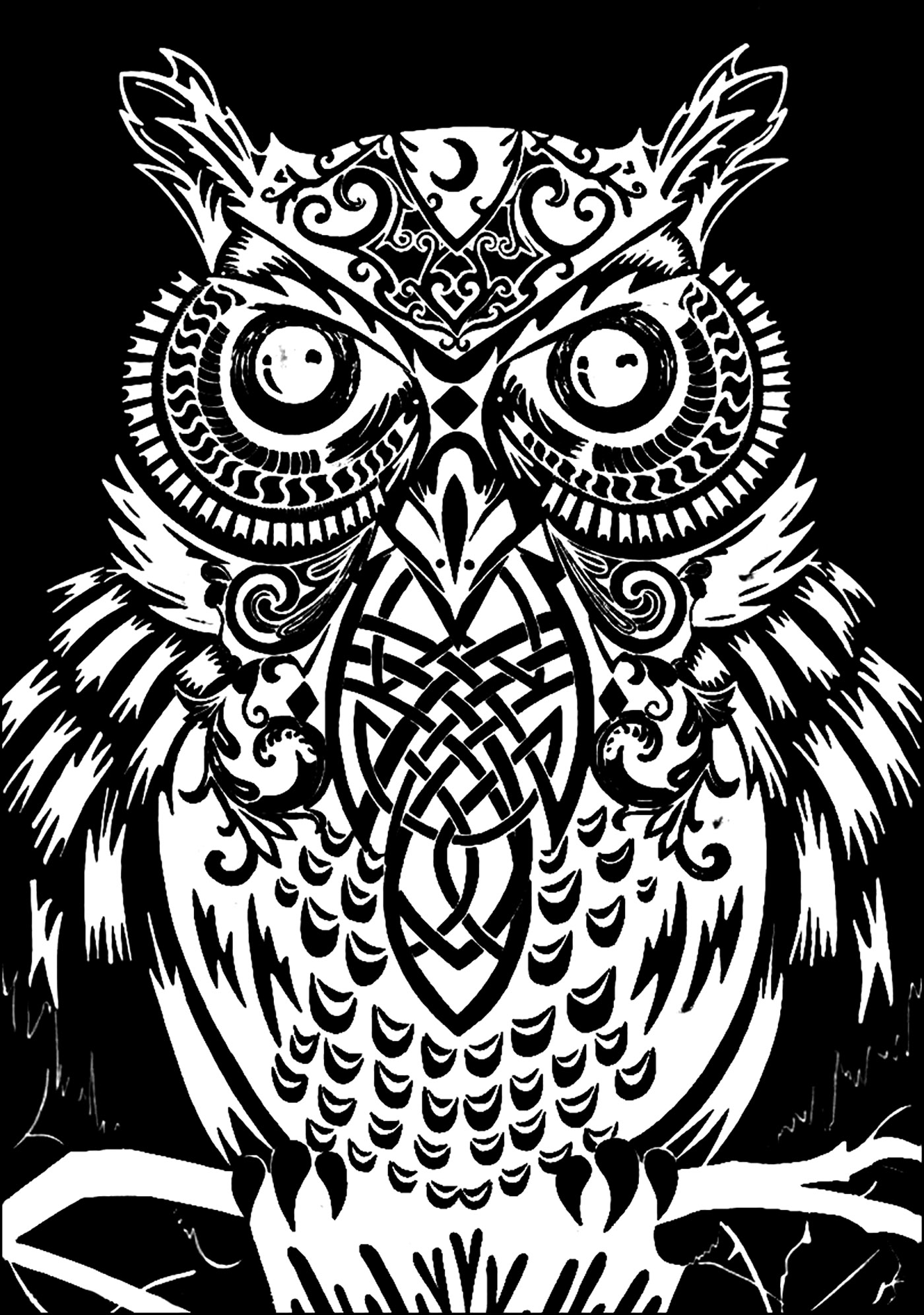 Owl black background - Owls Adult Coloring Pages
