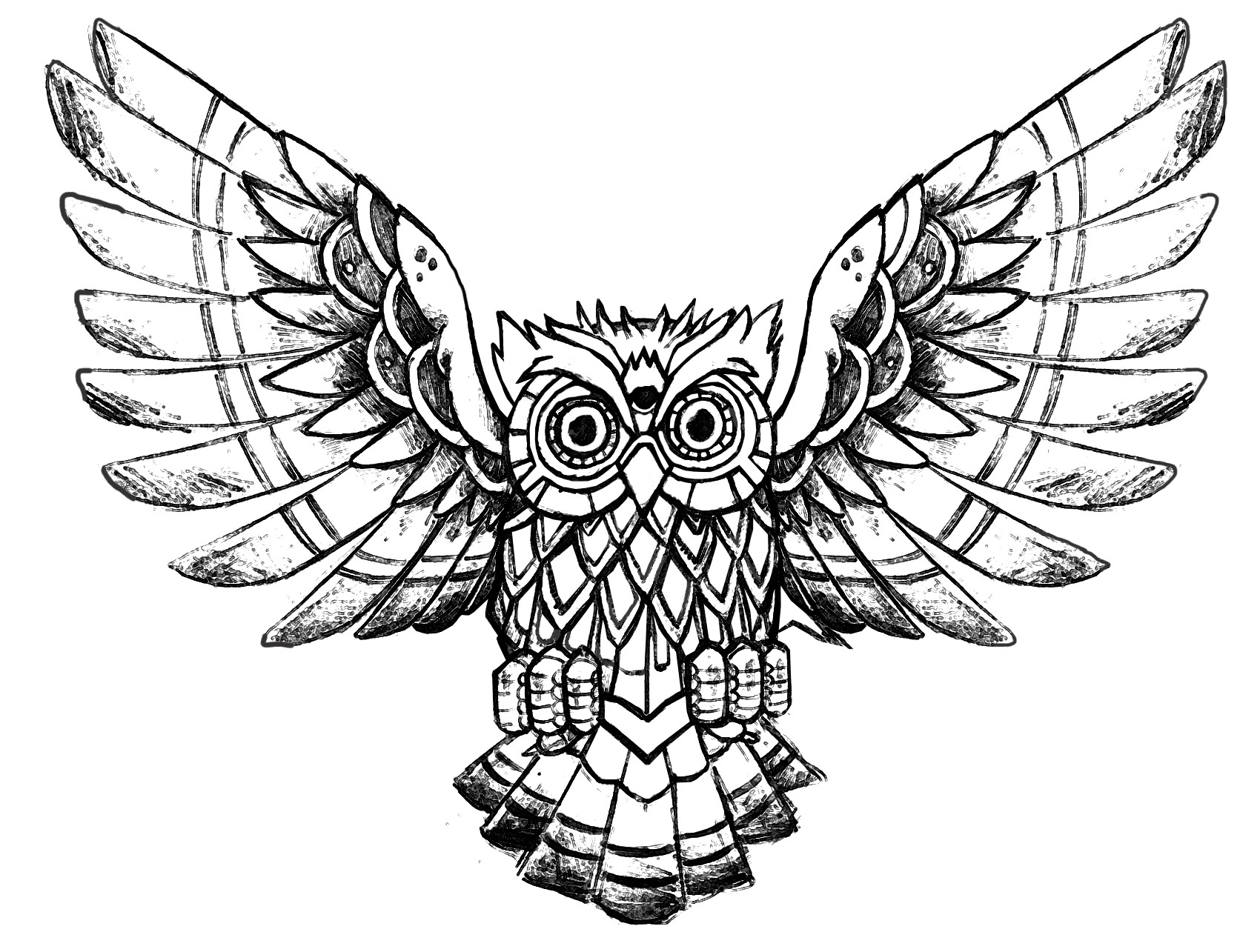 Owl raw drawing - Owls - Coloring pages for adults
