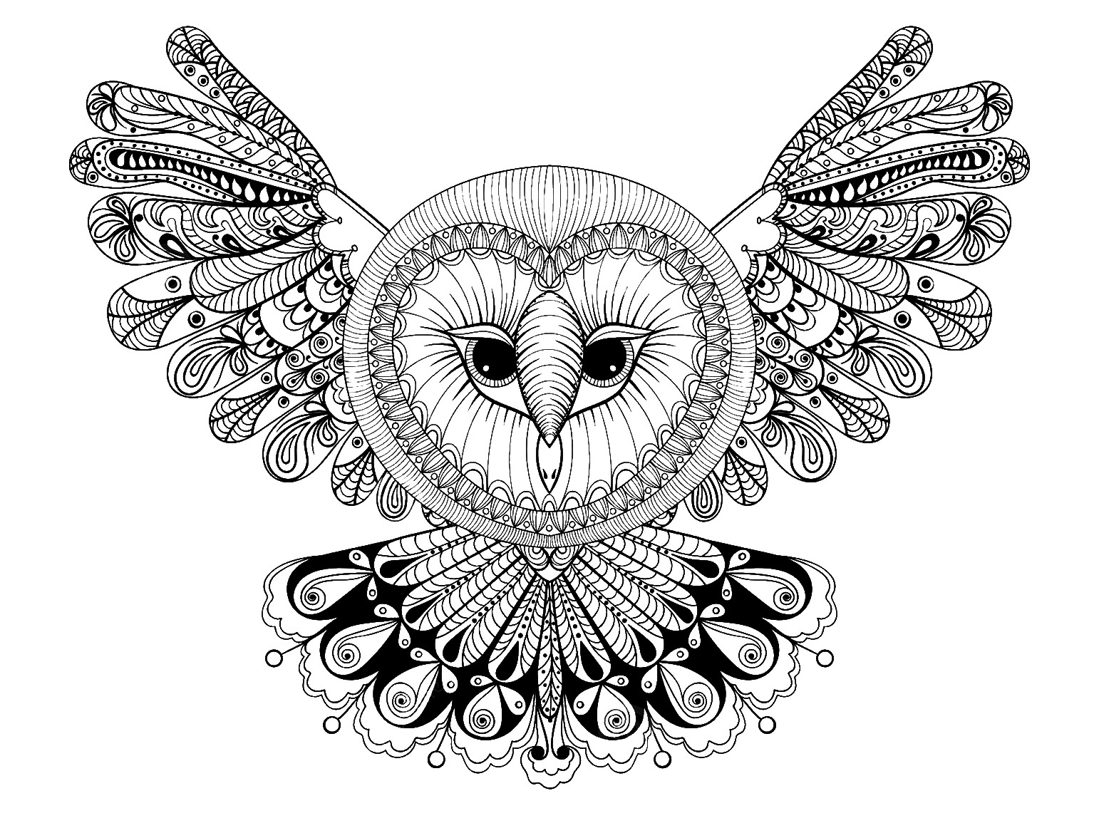Owl with big head - Owls Adult Coloring Pages