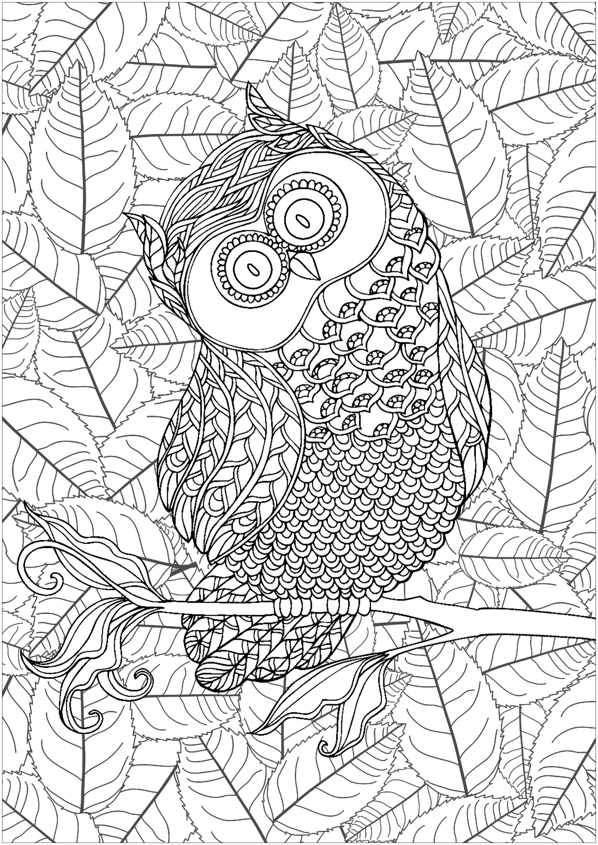 Cute mischievous owl with background full of interleaved leaves