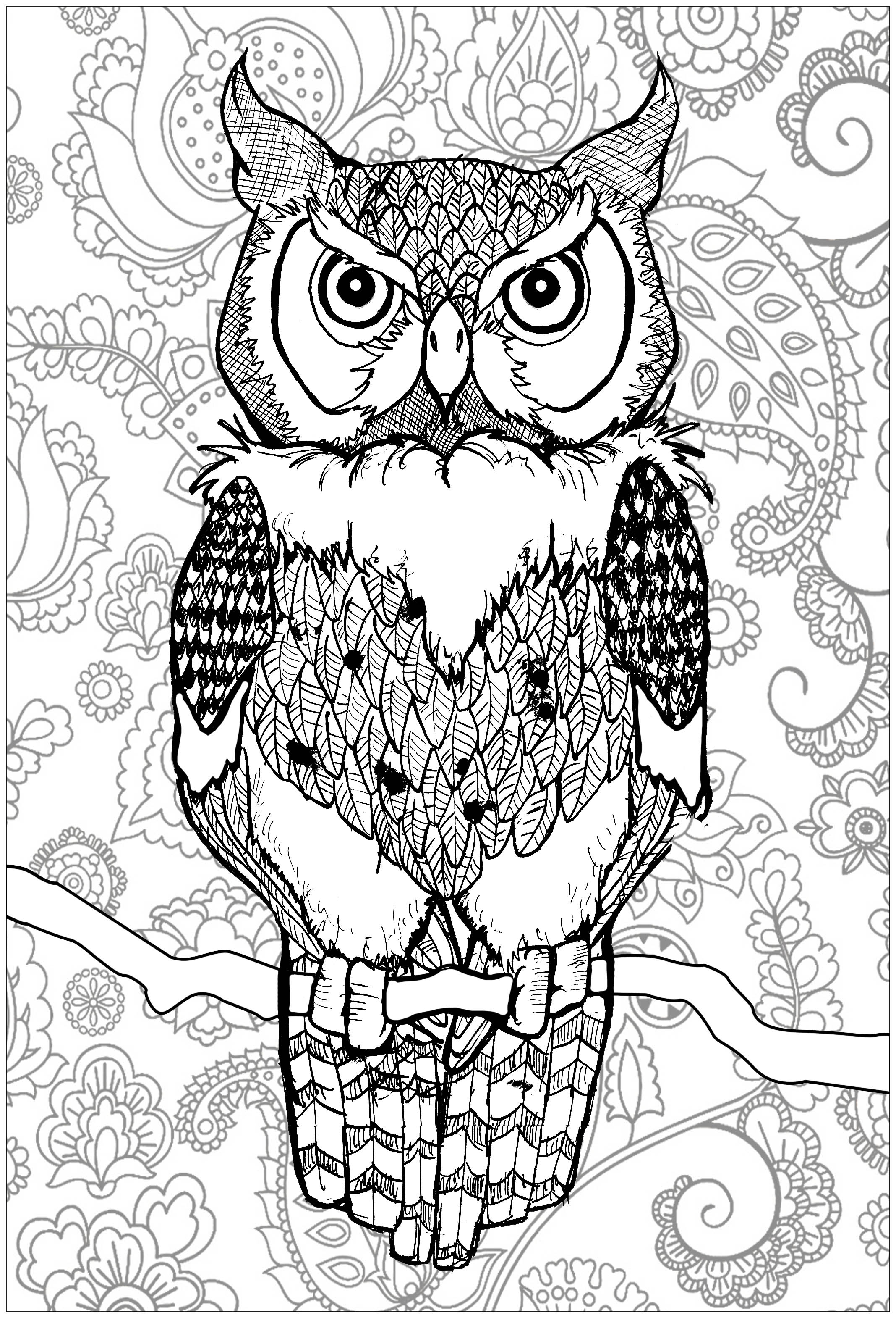 piercing eyes own with background - Owl Coloring