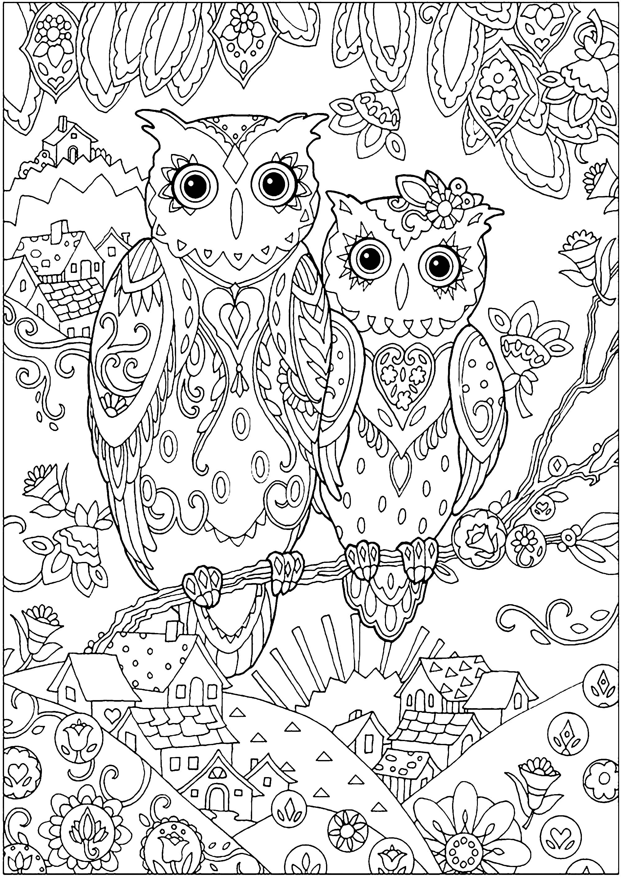 Two owls - Owls Adult Coloring Pages
